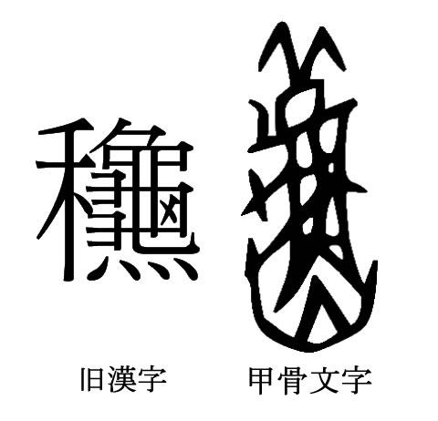 aki-4.jpg